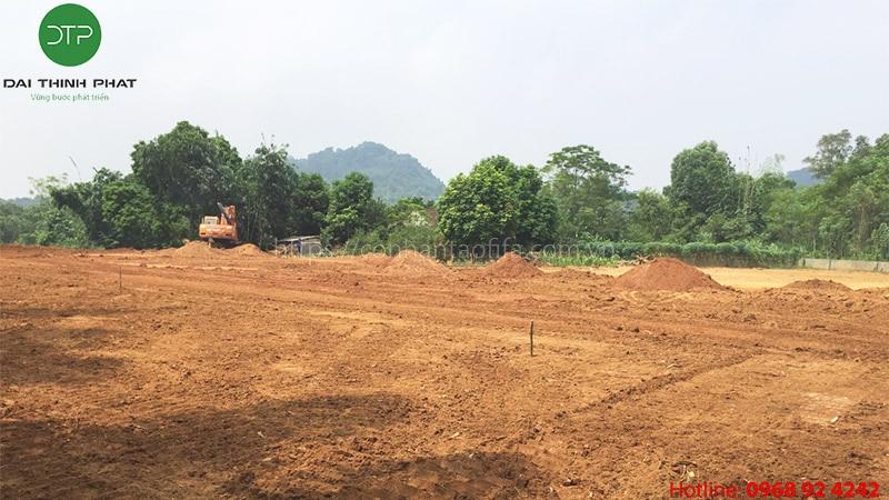 Cỏ nhân tạo Phú Thọ Đại Thịnh Phát conhantaofifa.com.vn