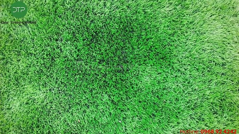 Bảo dưỡng cỏ nhân tạo đại thịnh phát conhantaofifa.com.vn